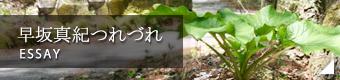 早坂真紀オフィシャルブログ